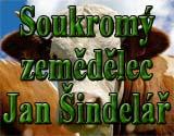 Logo Sindelar